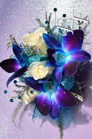 royal blue corsage deluxe blue orchids sweetheart corsage ef 817 essex