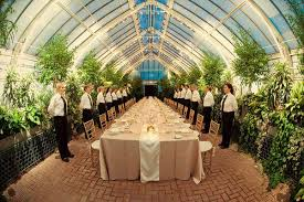 smoky mountain wedding venues real hindsight advice intimate smoky mountain wedding