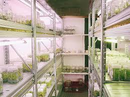 chambre de culture cannabis complete chambre lovely chambre de culture cannabis complete high