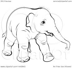 clipart graphic of a black and white lineart walking baby elephant