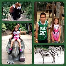 evan and lauren u0027s cool blog 8 11 15 roger williams zoo new