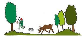 Leder på elgjakt