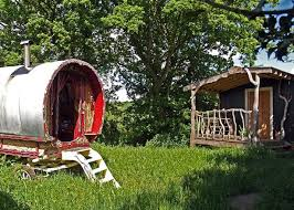 spend half term in treehouse in wales wales online