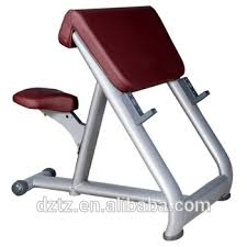 Bench Bicep Curls Bicep Curl Machine Bicep Preacher Bench Commercial Gym Machinetz