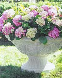 exterior beautiful stone urn planters for garden or exterior