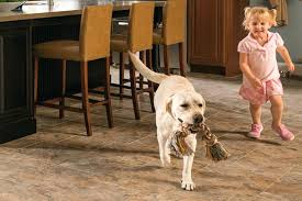 Best Flooring With Dogs Flooring For Dogs How To Proof Your Hardwood Floors Best Vinyl