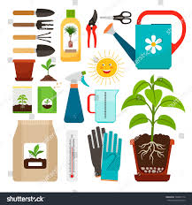 care houseplants indoor gardening icons fertilization stock vector