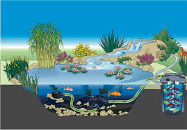 How To Build A Pond In Your Backyard by Pond Planner How To Build A Pond Pondusa Com Pond Fountain