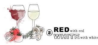 cartoon wine glass 10 surprising wine facts blog winerist