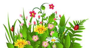 green flower clipart free png collection