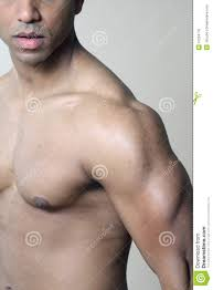 muscular shoulder chest and arm stock photo image of