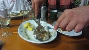 comment am ager cuisine comment découper un poisson restaurant bujol izola