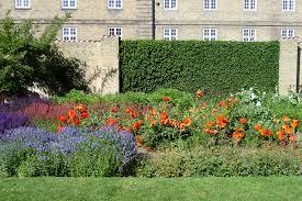 file kongens have perennial flower beds jpg wikimedia commons