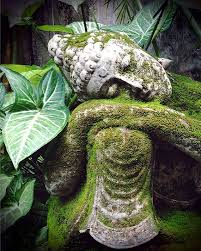 i find it amazing all the buddha statues i look at that has him