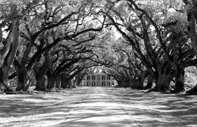 oak alley plantation floor plan tips for planning a romantic getaway in new orleans the dessert