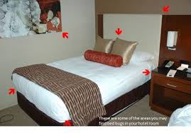 How To Make A Bed Bug Trap How To Inspect Your Hotel Room For Bed Bugs Bedbugs Net