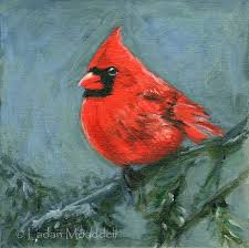 best 25 cardinal birds ideas on pinterest northern cardinal