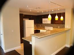 Hanging Kitchen Lighting Fun And Useful Track Lighting For Kitchen Laluz Nyc Home Design
