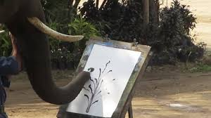 the incredible elephant that can probably paint as well as you