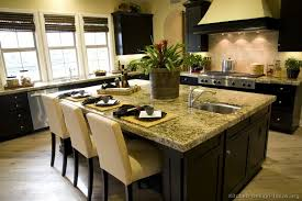 idea kitchen design pictures of kitchens traditional black kitchen cabinets