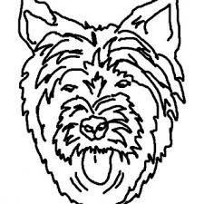 pages lots dog coloring book color