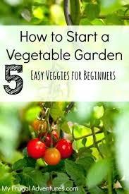 start a garden for beginners novice gardeners beginners vegetable