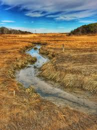 Nauset Marsh Cape Cod - nauset marsh was spectacular walking to coast guard beach on cape