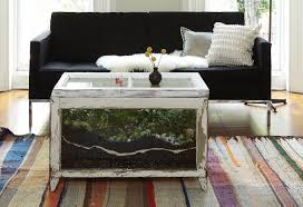 coffee table aquarium stunning aquarium coffee tables for sale home accessories aquarium