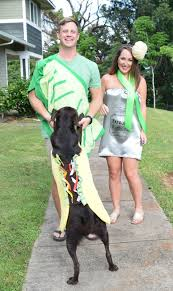 Family And Dog Halloween Costumes by Diy Tequila Shot Costume With Taco Dog Communikait