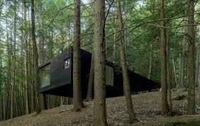 gallery of half tree house jacobschang architecture 1
