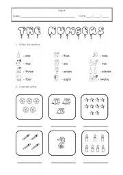the numbers worksheet by sally r