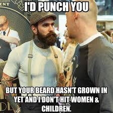 Facial Hair Meme - i d punch you but your beard hasn t grown in yet and i don t hit
