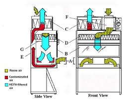 Class 2 Microbiological Safety Cabinet Biological Safety Cabinet Bsc Use Environmental Health And Safety