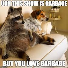 Racoon Meme - the meme ing of life raccoon dog above average