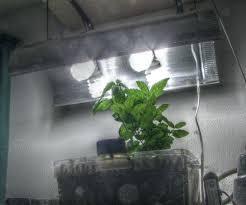 cfl grow light fixture cfl grow light fixture growing cfl grow light fittings