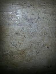Concrete Faux Paint - tuscan yellow paint color faux painting italian plasters