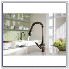 Moen Vestige Kitchen Faucet Moen Vestige Rubbed Bronze Kitchen Faucet Sinks And Faucets