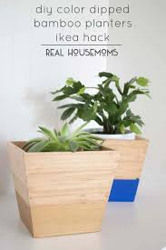 ikea planter hack diy color dipped bamboo planters ikea hack real housemoms