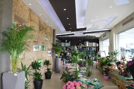 Eco Friendly Interior Design A Green Concept Store For An Eco Friendly Lifestyle The Switchers
