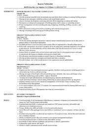 sle of resume project manager consultant resume sles velvet