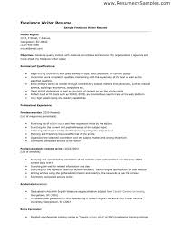 Objective Resume Example by Download Author Resume Sample Haadyaooverbayresort Com