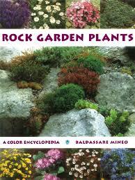 Colored Rocks For Garden by Baldassare Mineo Rock Garden Plants A Color Encycloepedia