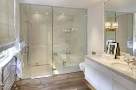bathtub in shower contemporary bathroom