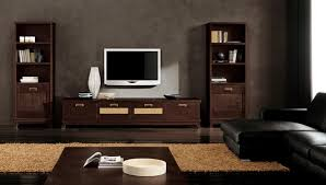 modern ethnic living room with small tv stand and two storage