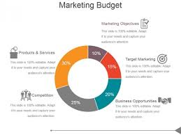 Marketing Budget Ppt Powerpoint Presentation Introduction Ppt Powerpoint