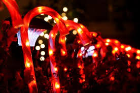 Candy Cane Lights Lighted Christmas Outdoor Decorations Lovetoknow
