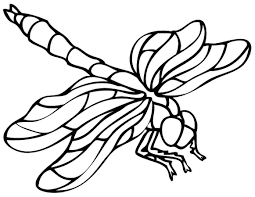 new dragonfly coloring page 13 about remodel free colouring pages
