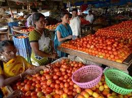 vashi market tomato prices double in two weeks could rise even further mumbai