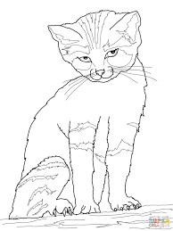 smart inspiration serval animal coloring pages click to see