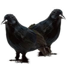 halloween props decoration prextex realistic looking halloween decoration birds black